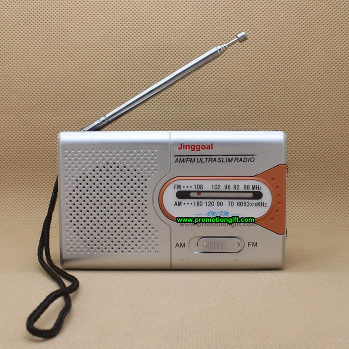 2 band radio